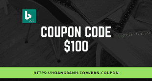 ban coupon bing ads coupon bing ads Bán Coupon Bing Ads $100 Giá Rẻ ban coupon bing ads 1 310x165