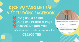 Dịch vụ Like bài viết tự động Facebook (VIPLIKE)