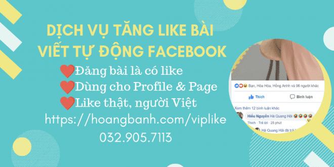 dịch vụ tăng bài viết tự động facebook like bài viết Dịch vụ Like bài viết tự động Facebook (VIPLIKE) d   ch v    t  ng b  i vi   t t         ng facebook 660x330