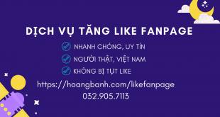 Dịch vụ tăng like fanpage